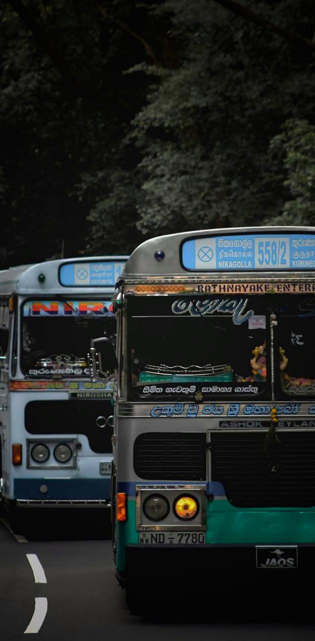 Bus Life Sri Lanka
