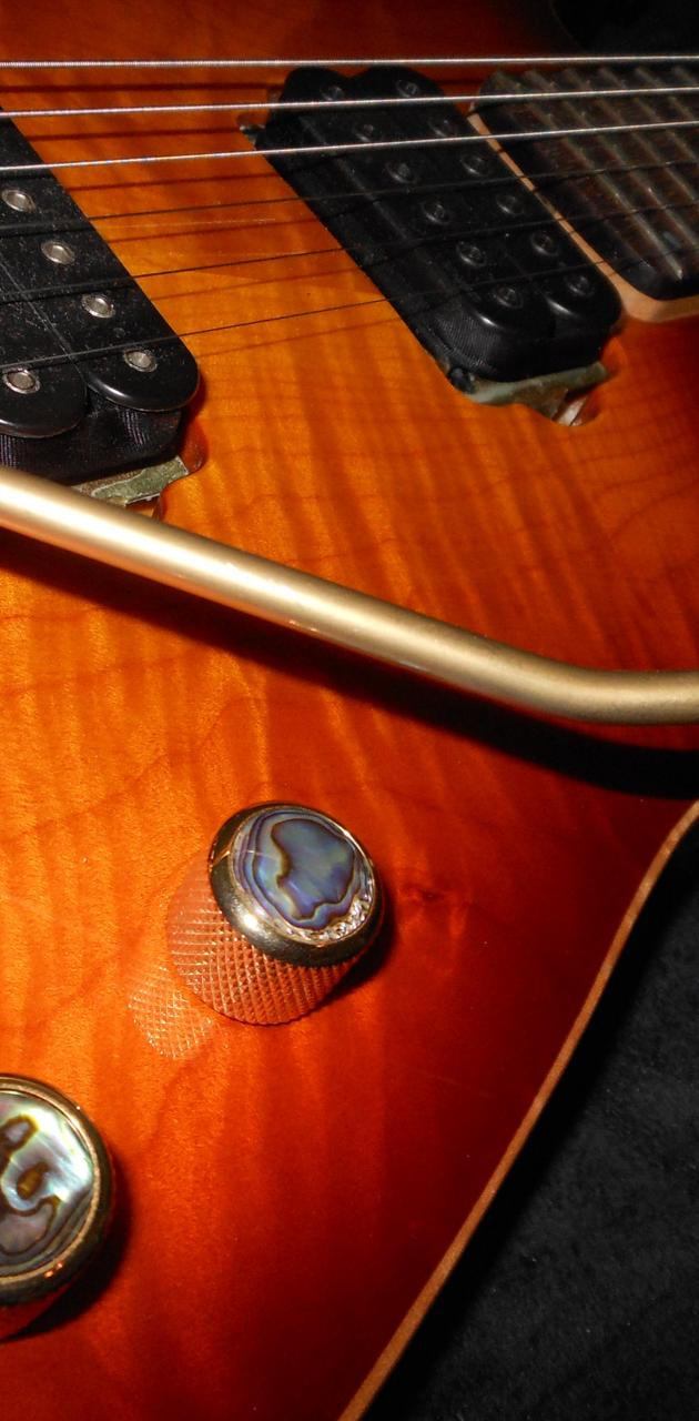Buck Dharma Guitar 2