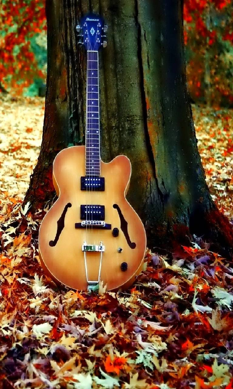 Hd Guitar Wallpaper By Julianna 92 Free On Zedge