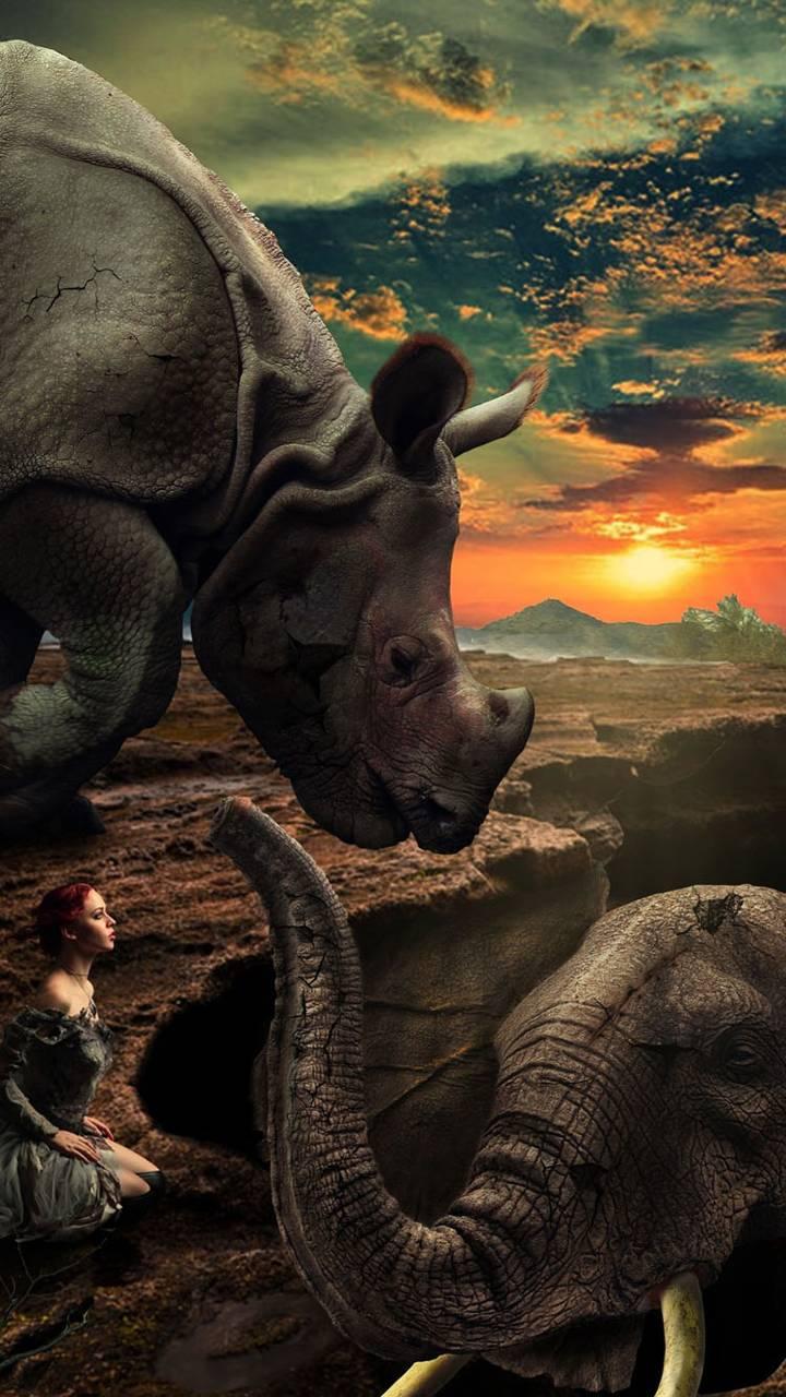 rhino girl elephant