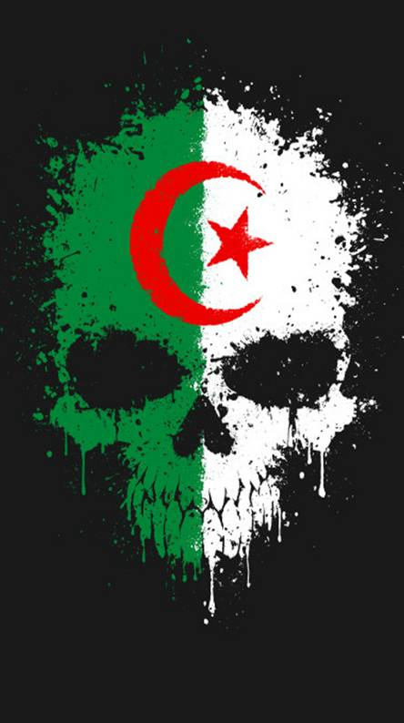 Algeria Wallpapers Free By Zedge