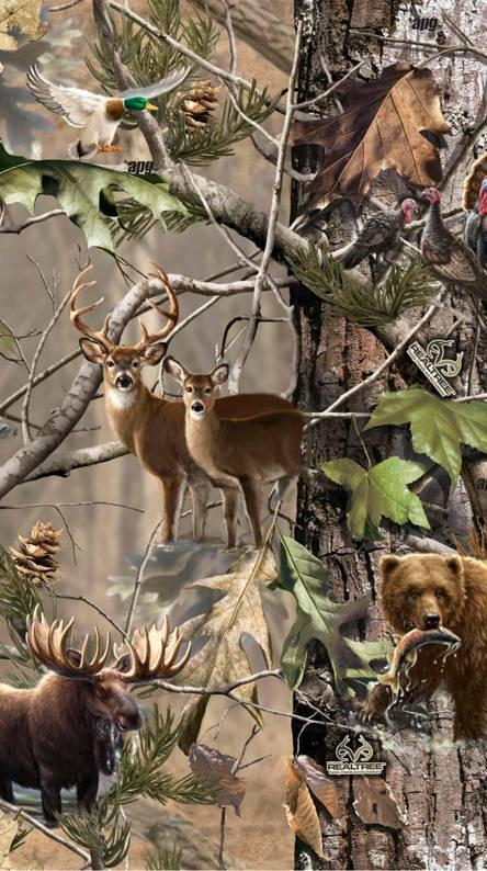 Deer Hunting Wallpapers Free By Zedge